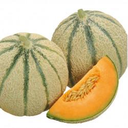 Melon Edgard
